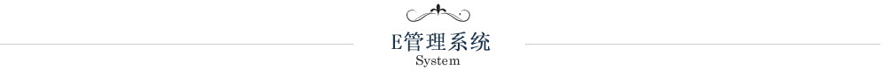 E管理系统
