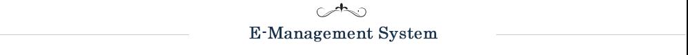 E-Management System